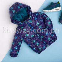 Демисезонная куртка для мальчика (98, 104, 110)