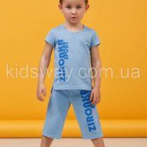 Комплект для мальчика: шорты и футболка